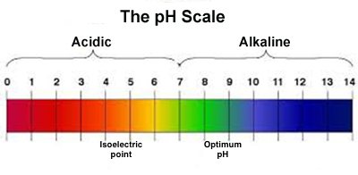 How to Adjust pH in Fish Tank